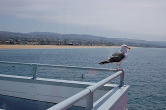 Photo: lunch at Ruby's, with a visitor