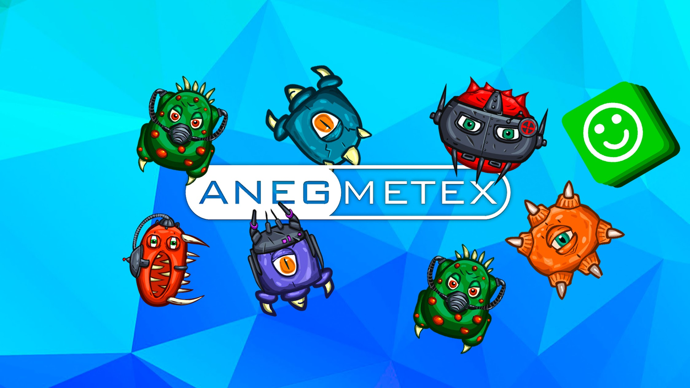 Anegmetex Software