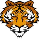 Tiger Wallpapers Tigers New Tab freeaddon.com