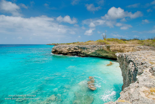 A craggy stretch of coastline in Bonaire.