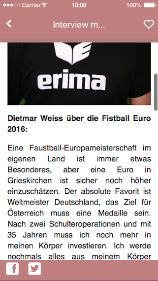 Fistball Euro 2016- screenshot