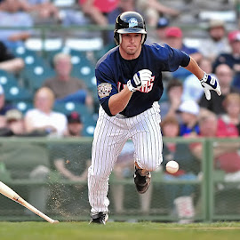 Bunt Attempt by Tom Theodore - Sports & Fitness Baseball ( baseball )