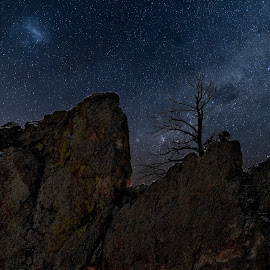 dead of night by Bruce Newman - Landscapes Mountains & Hills ( rocks, dead tree, night, stars, landscape,  )