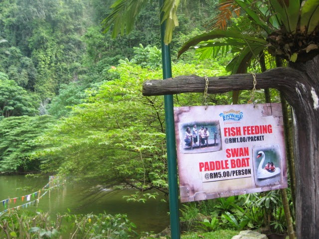 A trip to lost world of tambun theme park in malaysia blending our you can try paddling with the swan boat or fish feeding at swan lake in lost world of tambun theme park gumiabroncs Choice Image
