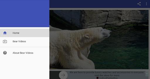 Bear Videos screenshot 1