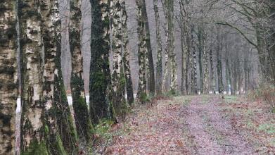 Photo: Le long de l'Epenerbaan