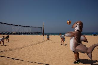 Photo: Dusky playing volleyball. Credit: Chris Panagakis