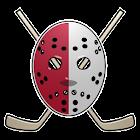 Detroit Hockey News icon
