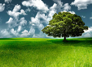 Photo: Landscape - green hills and lonely tree, the blue sky and white clouds. The picture was made from three big photos and downsized for better quality.