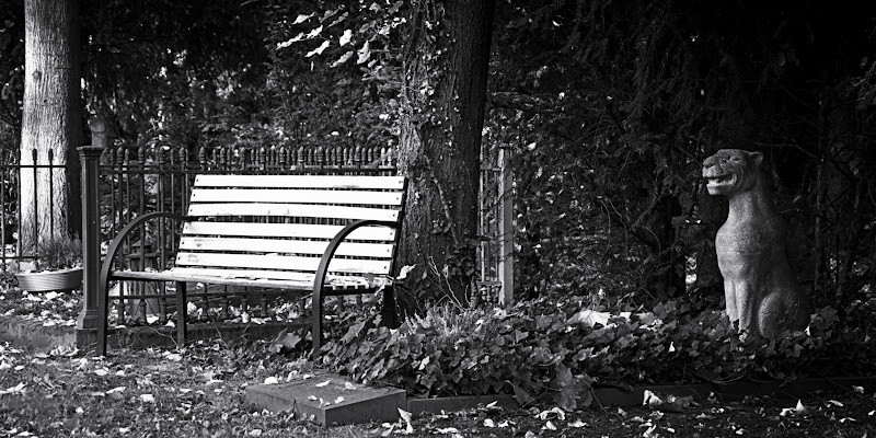 Photo: KPW - bench at Melaten cemetery