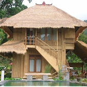 Bamboo House Fancy