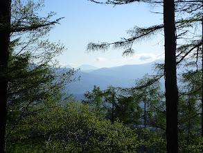 樹間から遠くの山