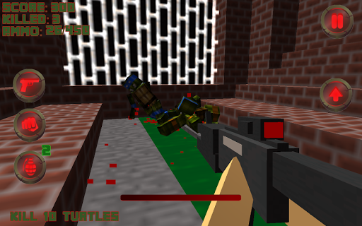 Turtles Killer Craft