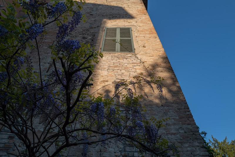 Primavera e Pasqua con luci e ombre di olmetto