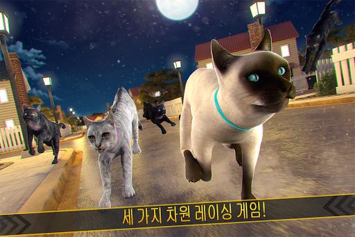 玩免費模擬APP|下載???? 야옹! 귀여운 키티 강아지 고양이 아가 app不用錢|硬是要APP