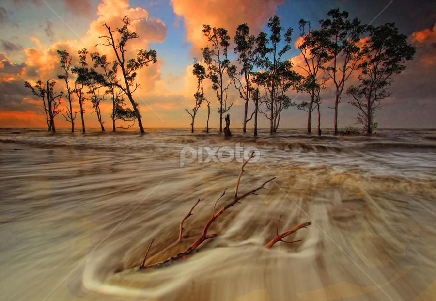 WAVE by Farid Wazdi - Landscapes Beaches