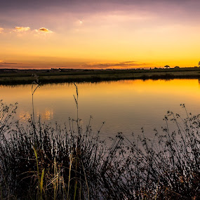 Golden Sunset by Hilton Viney - Landscapes Sunsets & Sunrises ( canon, clouds, water, eos, sky, nature, waterscape, sunset, beautiful, 600d, glow, stunning )