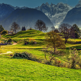 Peaceful trails by Haim Rosenfeld - Landscapes Mountains & Hills ( exposure, dreamy, europe, mountain, beauty, yellow, landscape, swiss, sky, nature, tree, cold, autumn, switzerland, nikon, place, light, foreground, alps, clouds, soglio, grass, colors, green, beautiful, mood, image, atmosphere, forest, scenic, morning, photo, picture, season, color, blue, background, outdoor, trees, moody, view, natural )