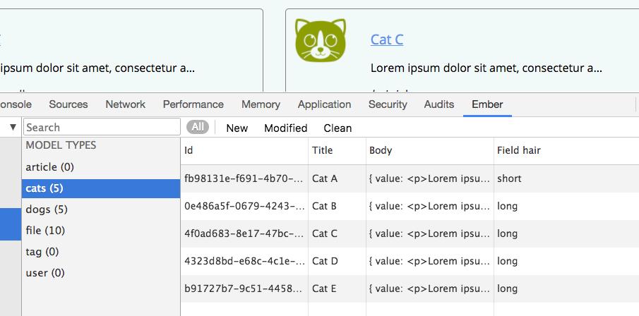 Ember Data library