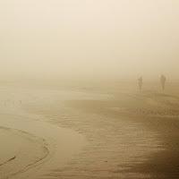 Nella nebbia  di