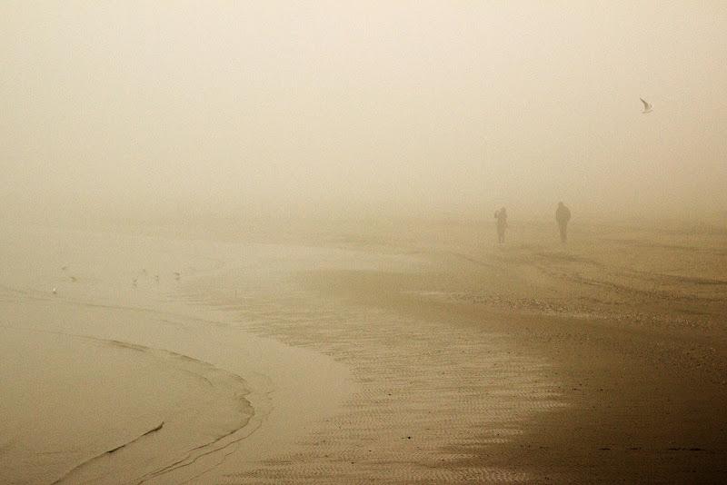 Nella nebbia  di Sebastiano Pieri