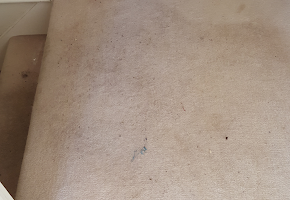 A dirty carpet before peacock carpet cleaning services has cleaned it