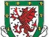 Wales worstelt zich voorbij Azeri