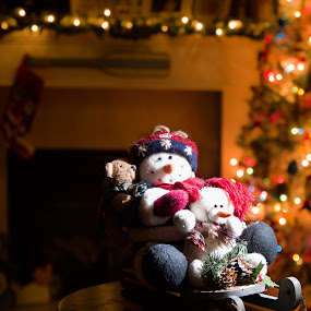 CHRISTMAS STILL LIFE by Mike Zegelien - Public Holidays Christmas ( night, bokeh, still life, christmas, holiday )