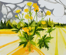 """Photo: Buttercup Drawing, pencil and acrylic on mylar, 30"""" x 36"""", 2014, Collection of the artist"""