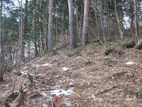 雪のない尾根道