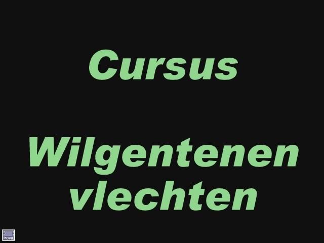 Video: Cursus wilgentenen vlechten 2012