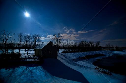 moonlight-73037338.jpg