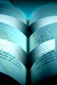 Leer por leer