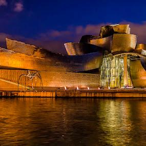 Guggenheim Museum Bilbao  by Mihail Marzyanov - Buildings & Architecture Public & Historical