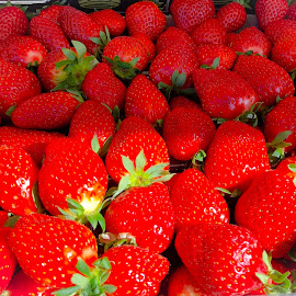 Red,Red, Strawberries  by Ginny Serio - Food & Drink Fruits & Vegetables
