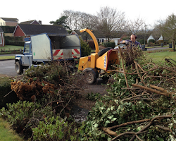 paul jackson clearing out cut trees and hedges in devon