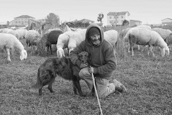 Il pastore e il suo cane di Furlissima