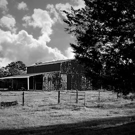country by Brenda Shoemake - Black & White Landscapes (  )