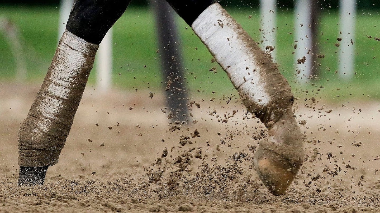 Watch Belmont Stakes Draw live
