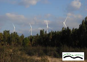 Photo: A lo lejos, los molinos, que ya invaden nuestras cumbres.