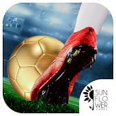 Soccer League Kicks & Flicks