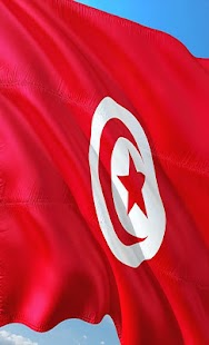 Tunisia Flag Wallpapers - náhled