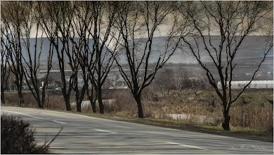 Photo: Turda - Str. Constructorilor, panorama printre copaci - 2018.03.09