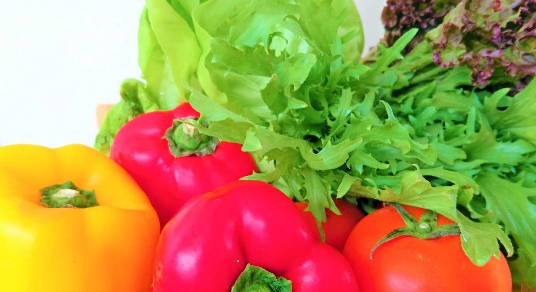 Marsu Xincheng Vegetarian Seaview B and B