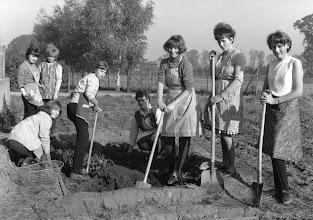 Photo: Gartenarbeit um 1966 Anfertigung eines Sandeinschlags