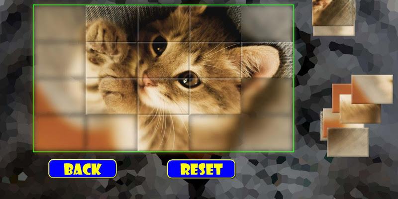 Puzzles: Kittens - screenshot