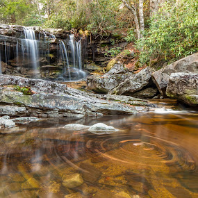Big Run Falls Swirl by Kevin Frick - Landscapes Waterscapes ( stream, west virginia, swirl, waterfall, leaves, tanic water )