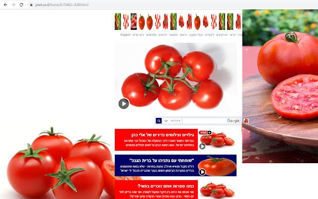 Tomatofy