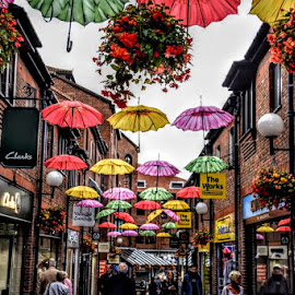 york street by Betty Taylor - City,  Street & Park  Street Scenes ( travel photography, umbrellas, street photography, street scenes, colours,  )
