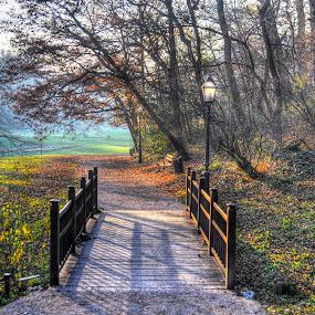 by Zeljko Kliska - City,  Street & Park  City Parks ( , bridge )